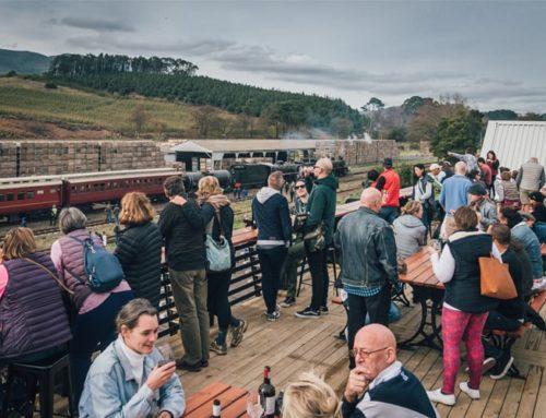 PICS: Choo choo your way to a new train market in Elgin & other train trips to explore around SA